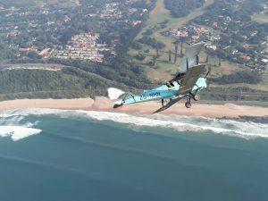 tiger moth flights in south africa